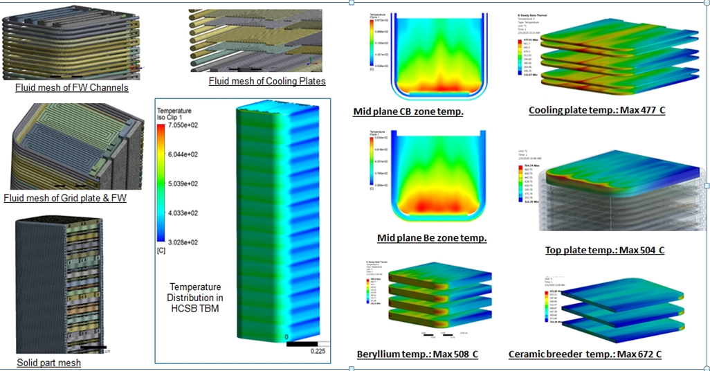 CFD model and thermal performance of HCSB blanket module